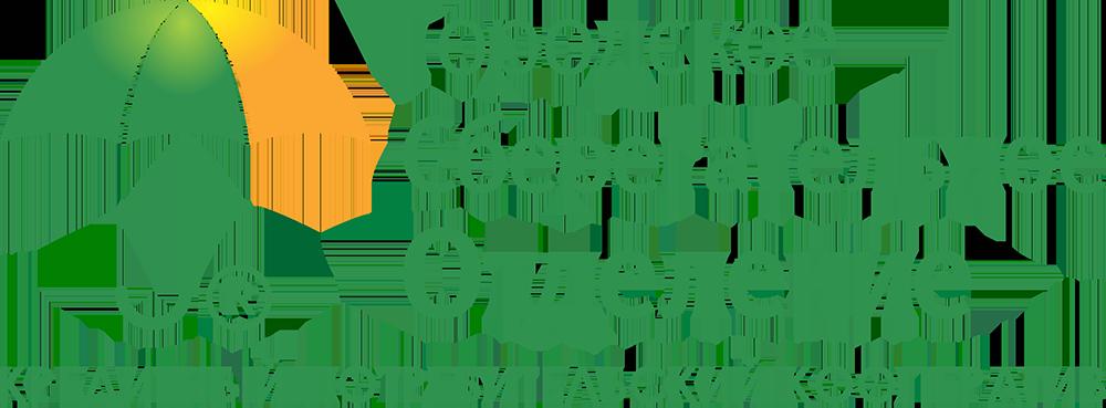 Под залог птс займ иркутск можно ли покупать автомобили в ломбардах